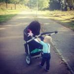 Stokke Stroller winnen door je #hotspot te delen