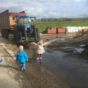 Boerderij leven
