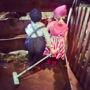 rolverdeling boerderij feest Fien en Teun