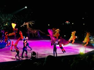 Disney on ice betoverende werelden verjaardag