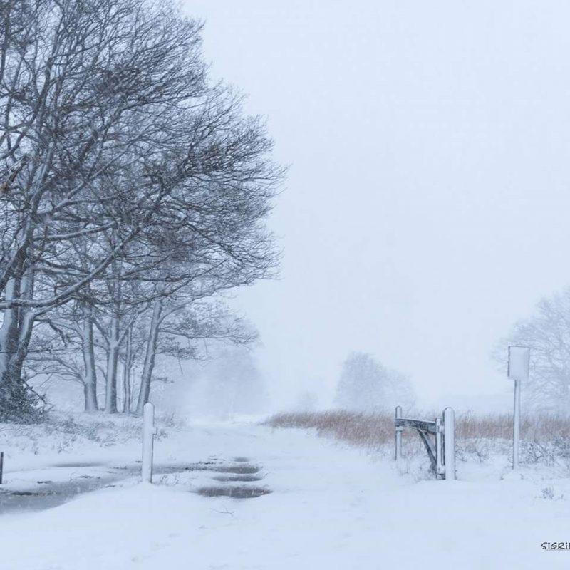 Sneeuw: doodsbang om te gaan autorijden nadat we op de kop in de sloot lagen