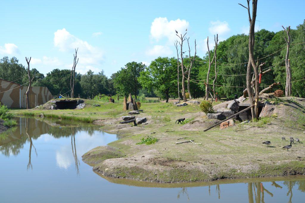 Safaripark beeksebergen, alpentocht