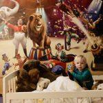 Circus kamer voor onze kleine aap, de circusartiest