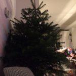 kerst drie koningen kerstboom