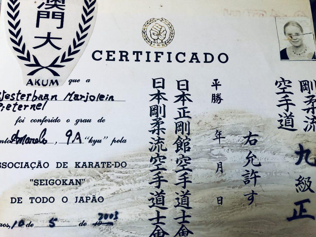 sporten karate