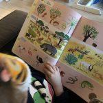 Vakantiepret begint met deze boeken van Deltas