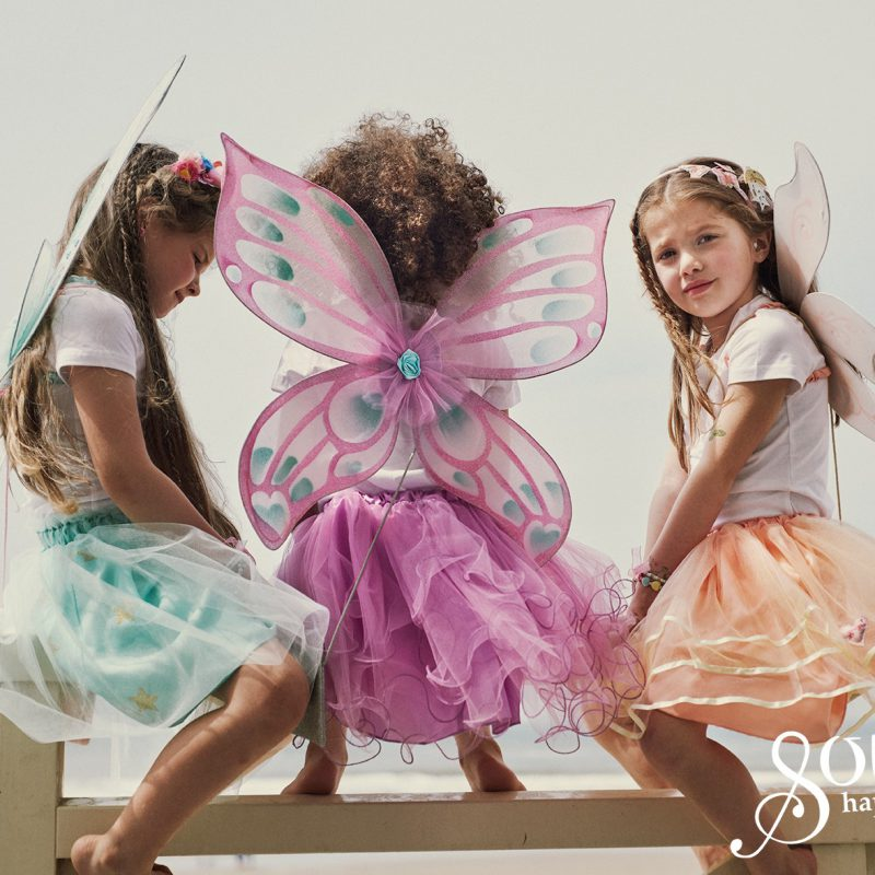 Feeën dag – International Fairy Day – 24 juni