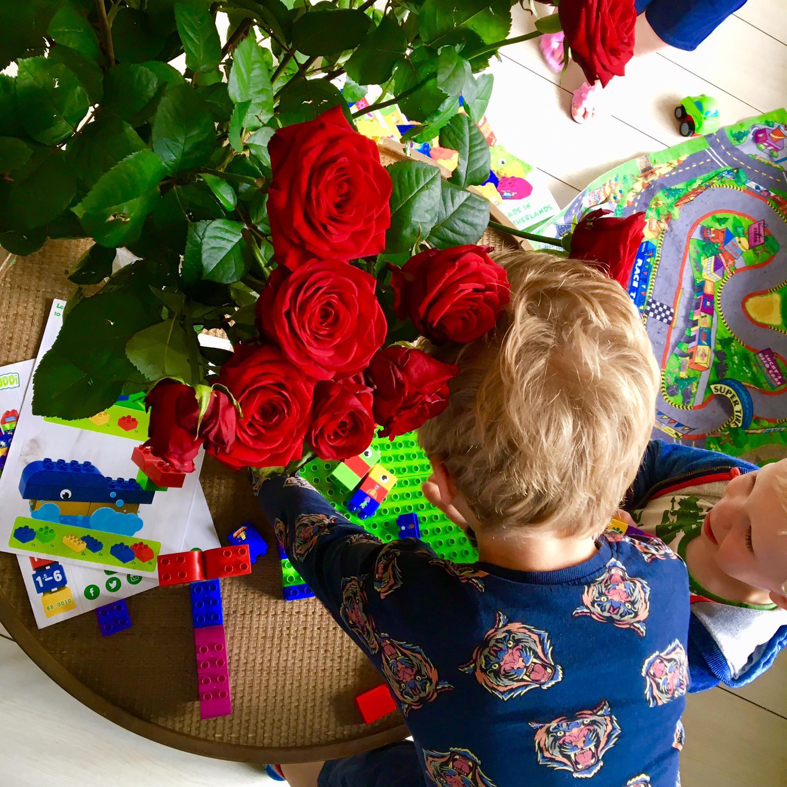 BiOBUDDi speelblokken, duurzaam, Nederland, speelgoed