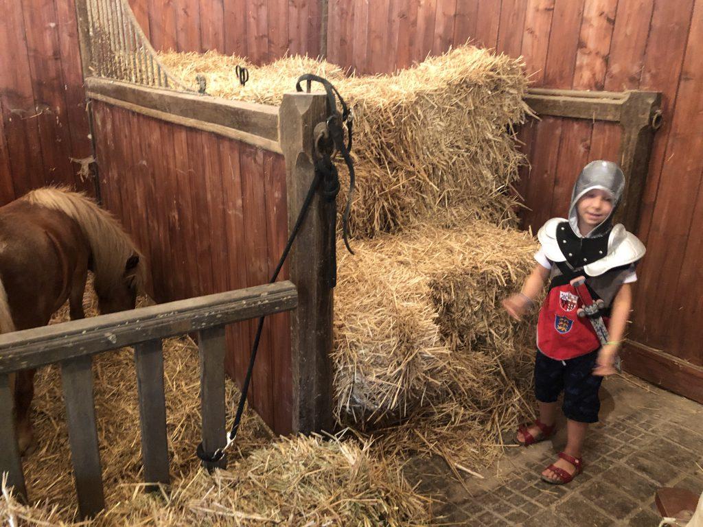 ponyrijden, paardrijden