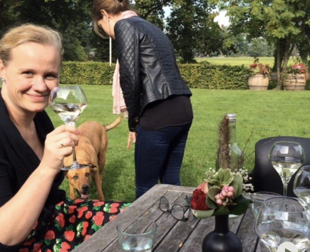 voordelen van wijn, dry january