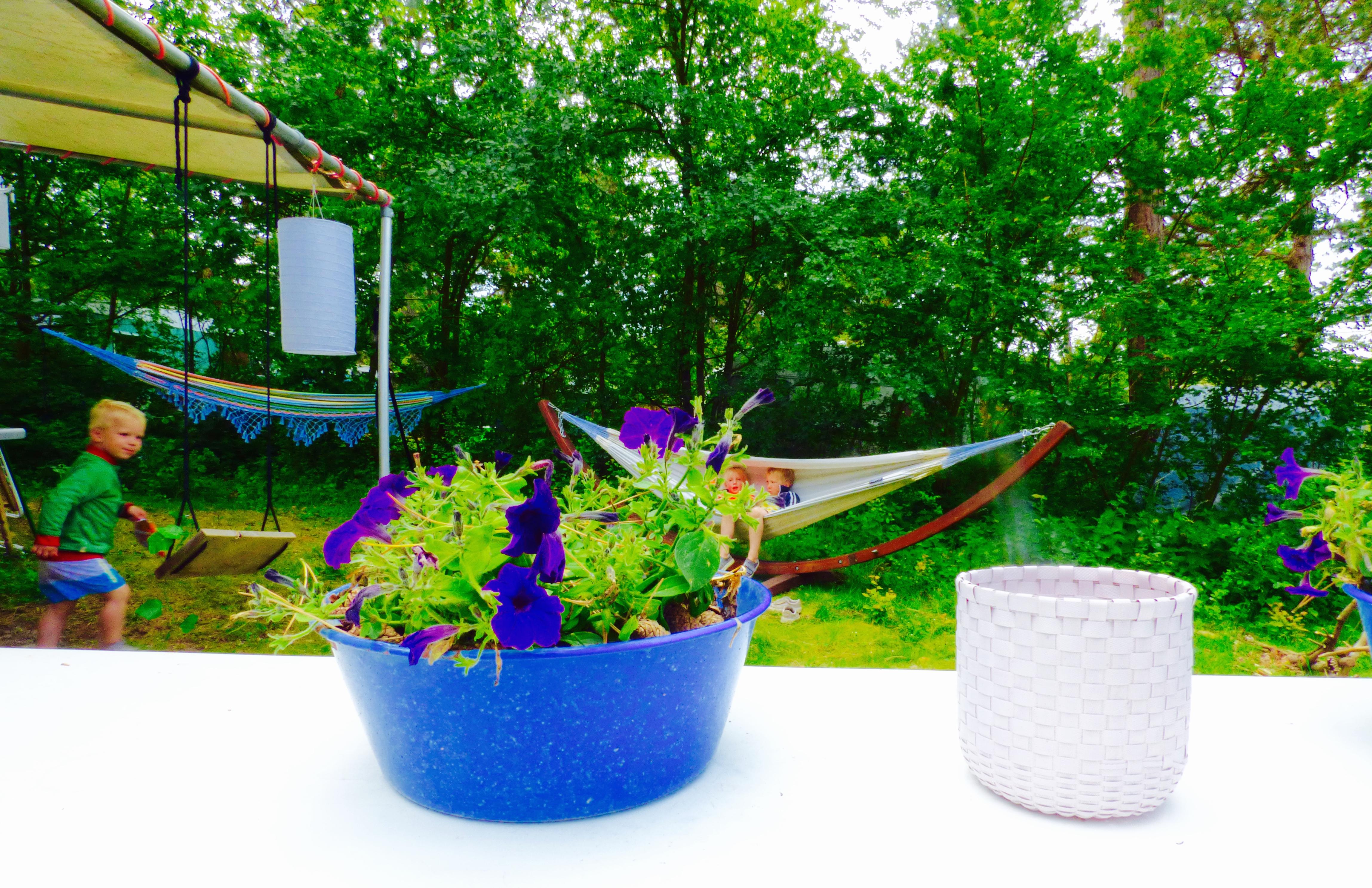 bakkum, tuin, kamperen met kinderen