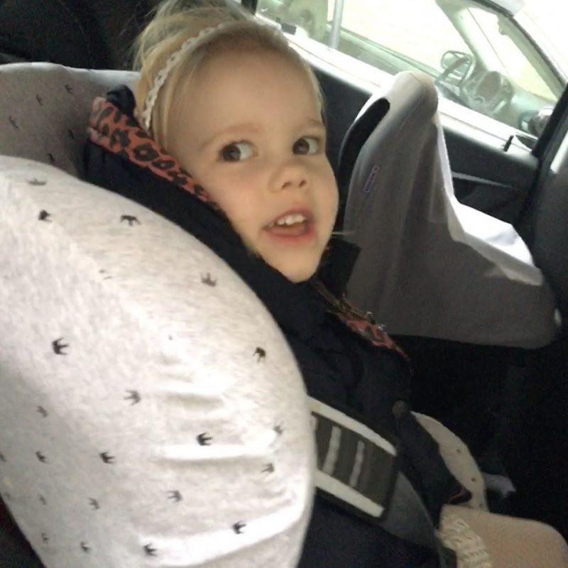 Lekker hip op de achterbank met de Dooky seat cover