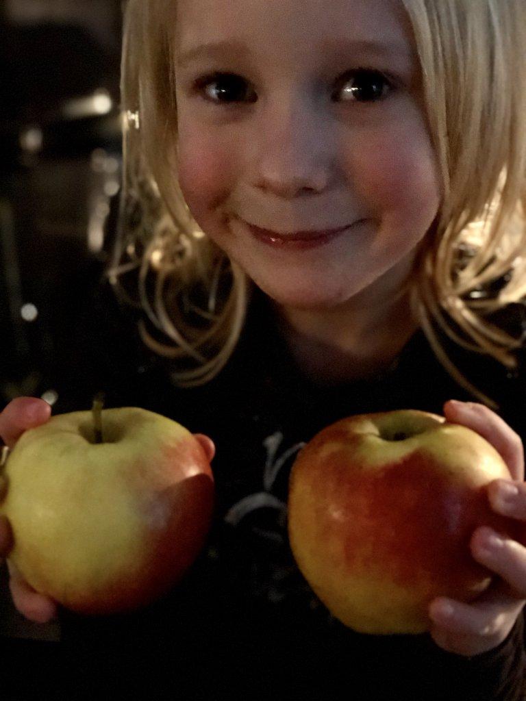 het appel experiment, woorden kunnen pijn doen, woorden