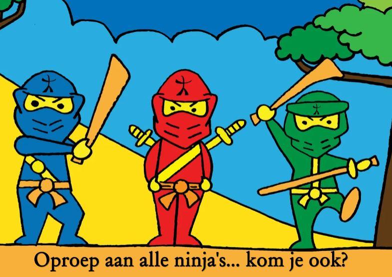 Ninjago feest, kinderfeestje, Ninjago