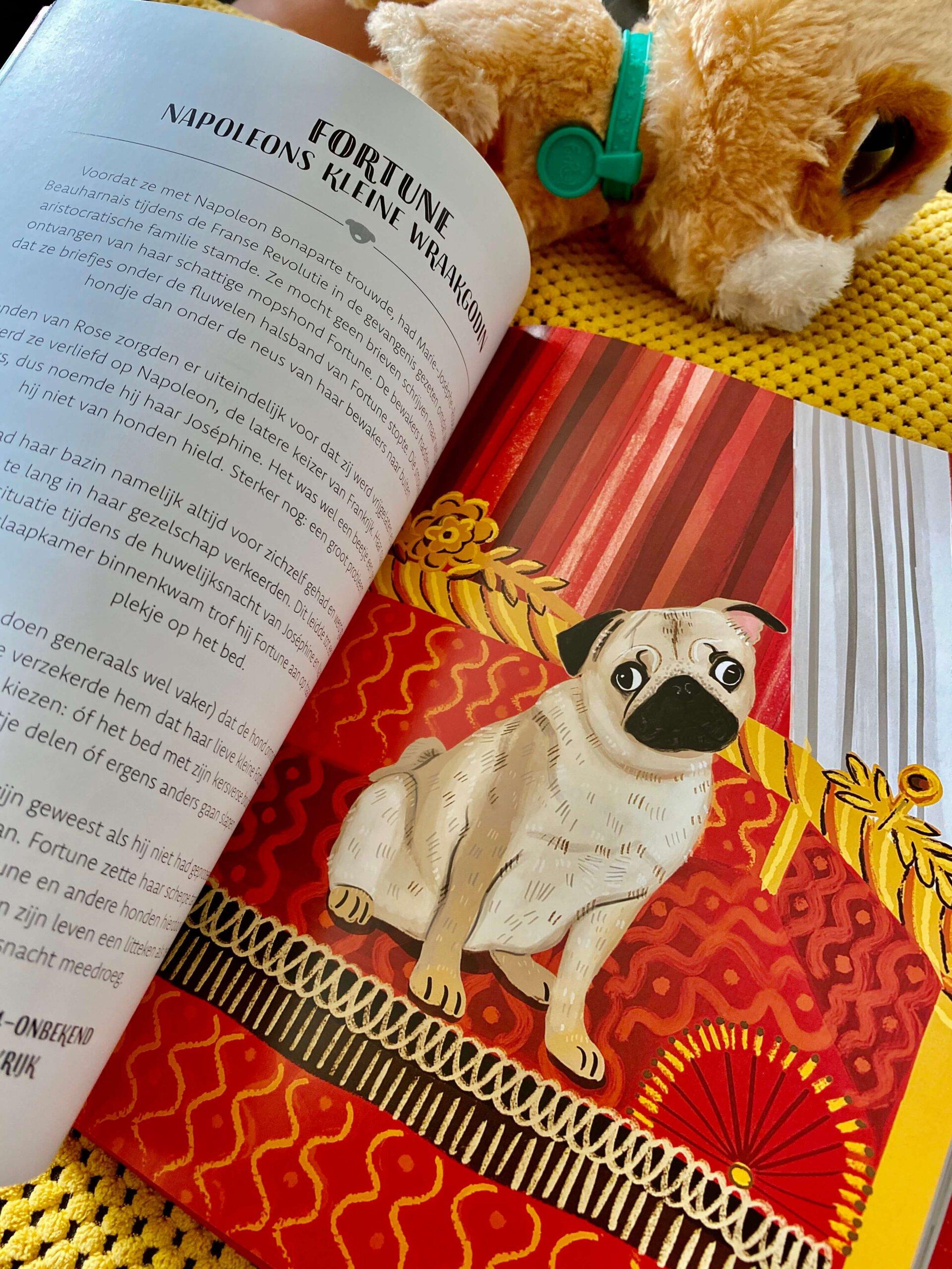rebelse honden, trouwe viervoeter, honden, katten, boek