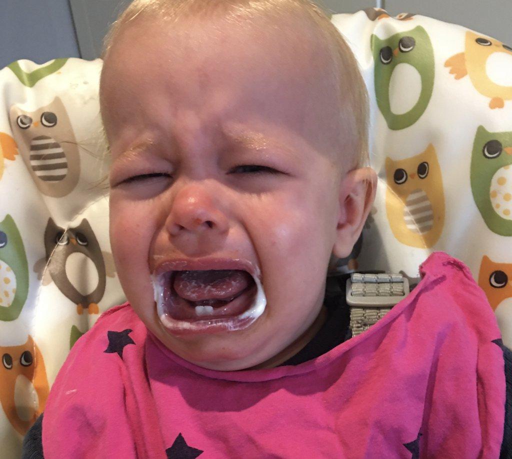 school huilen eloise