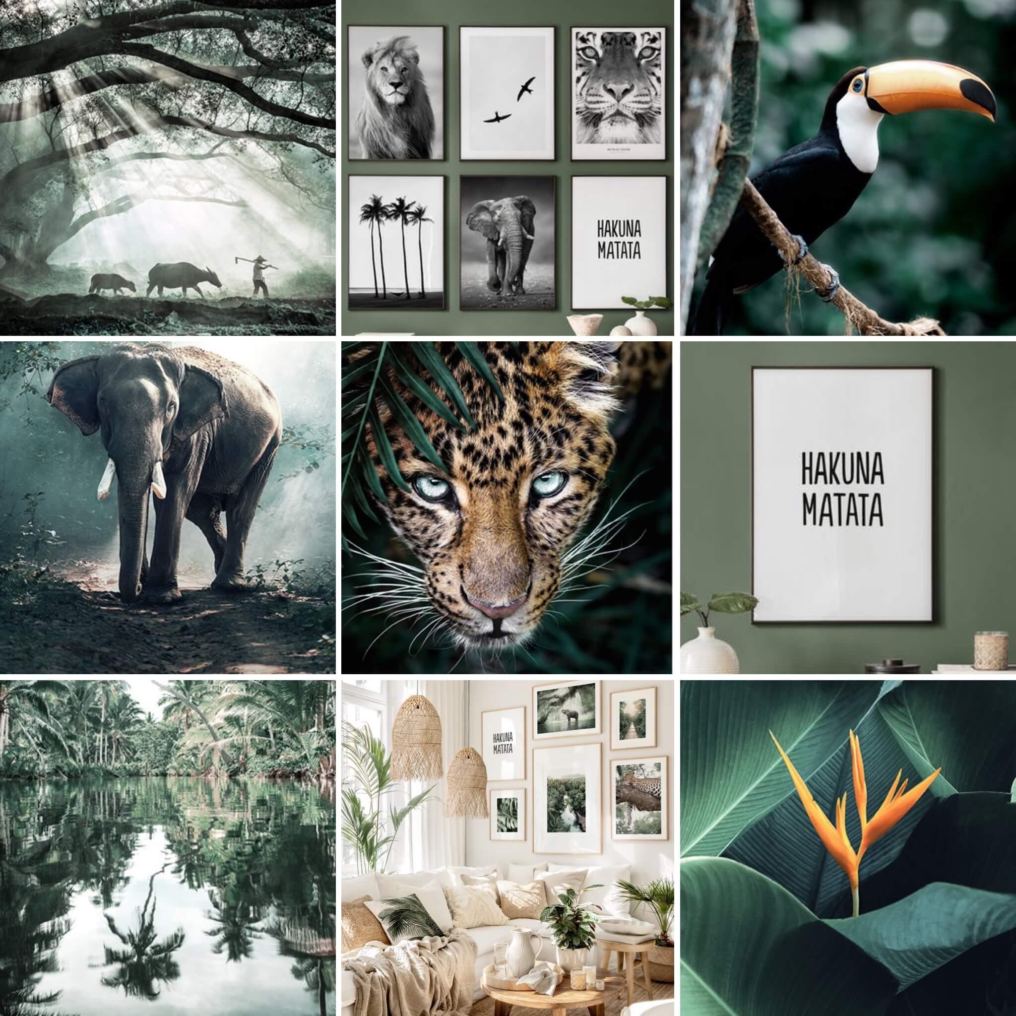 jungle kamer, poster store
