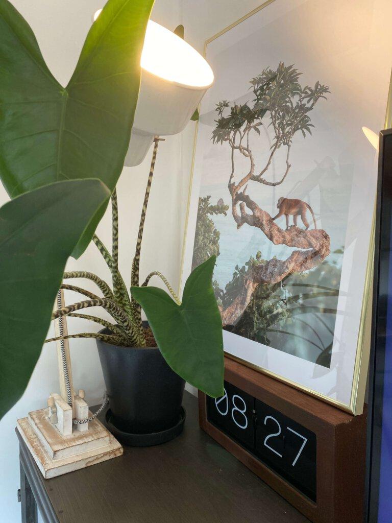 Poster store, jungle kamer, jungle fever, kinderkamer, tips jungle kamer