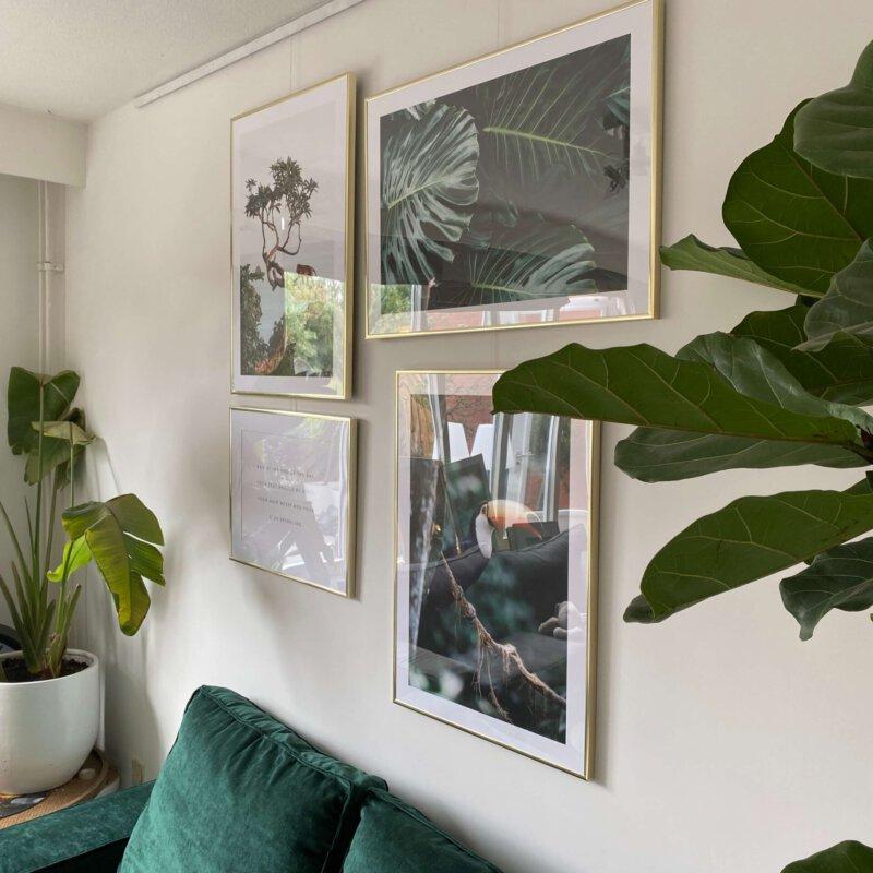 Jungle posters voor de jungle kamer van onze avonturier