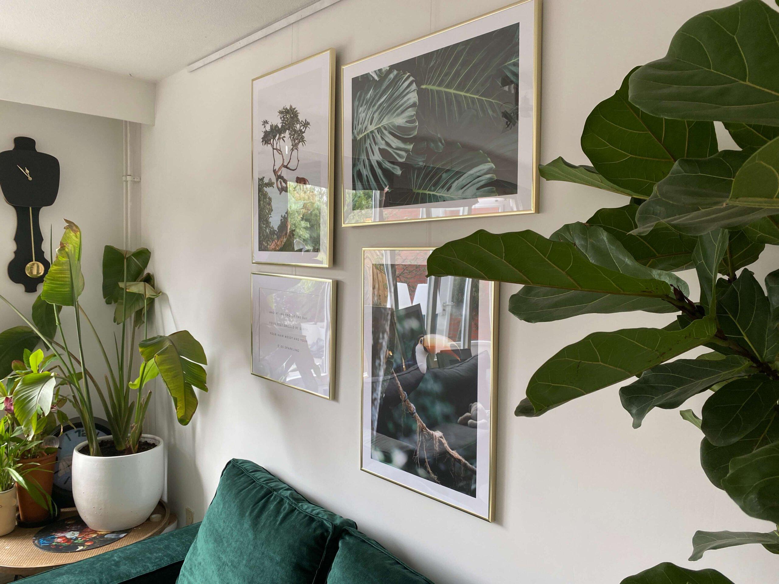 jungle posters, Poster store, jungle kamer, jungle fever, kinderkamer, tips jungle kamer