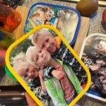Nieuwe school, nieuwe start dat moeiteloos verliep met deze 5 tips! Mymepal, broodtrommel, lunchbox, lunchen